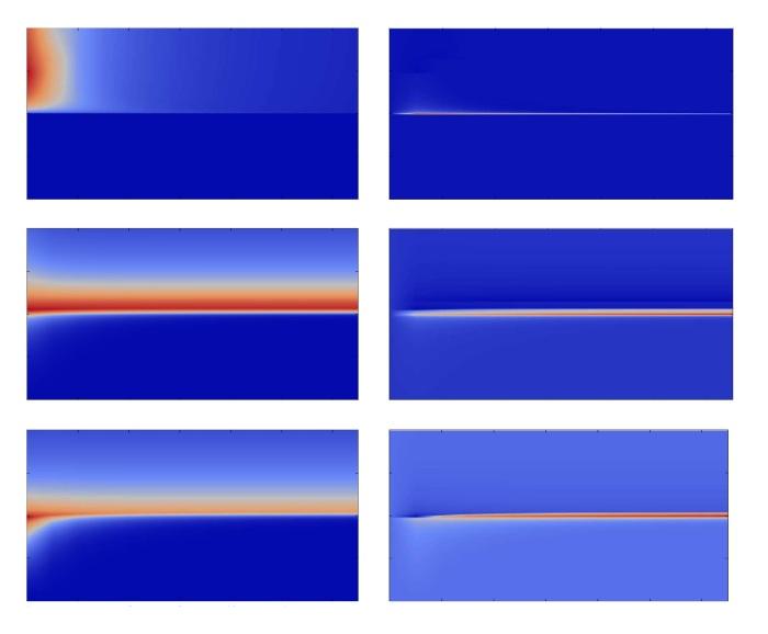 Fingerprints of quantum phase transition (...)