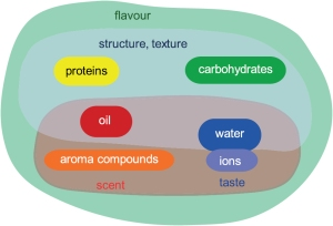 The basic classes of molecules in foods.