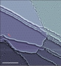 Image of the week - defects in graphene (adapted)