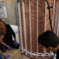 Laura and University of Zurich team assembling the XENON1T time projection chamber