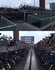 Bikes parked outside Nijmegen train station. There are more levels below ground, and this is a typical sight in the Netherlands. © Dewan Chowdhury.
