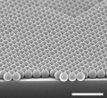 A tilted-view SEM image showing monolayer polystyrene colloidal crystals