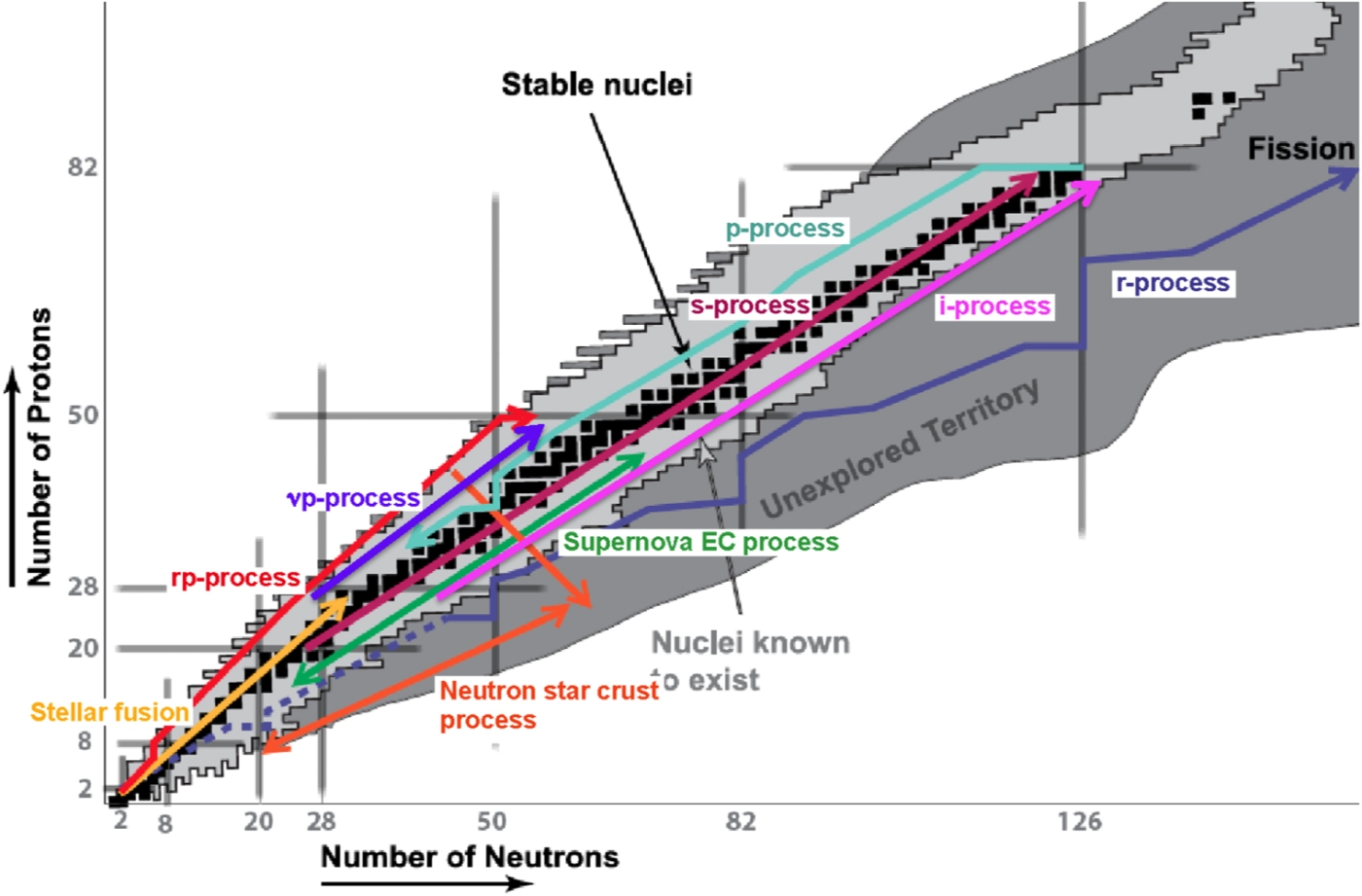 what is supernova nucleosynthesis Stellar nucleosynthesis creates heavier elements from hydrogen and helium learn how stars use fusion to produce heavier and heavier nuclei.