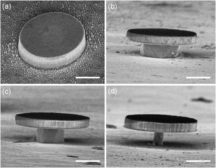Tilted-view SEM images of a GaN/InGaN microdisk with radius of 3.5 µm. (a) Before KOH wet-etch and on Si pedestals with radii of (b) 1.75 µm, (c) 1.05 µm and (d) 0.35 µm. The scale bars represent 2 µm. Image taken from Yiyun Zhang et al 2016 J. Phys. D: Appl. Phys. 49 375103. © IOP Publishing, All Rights Reserved.