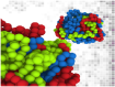 molecular-dynamics-simulation-of-polymers-in-disordered-spherical-globules