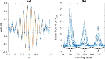 (a) Experimental observation of the system's response to external influence. (b) From the experimental data, lower bounds on the extend of quantum coherence N_{eff} can be derived.